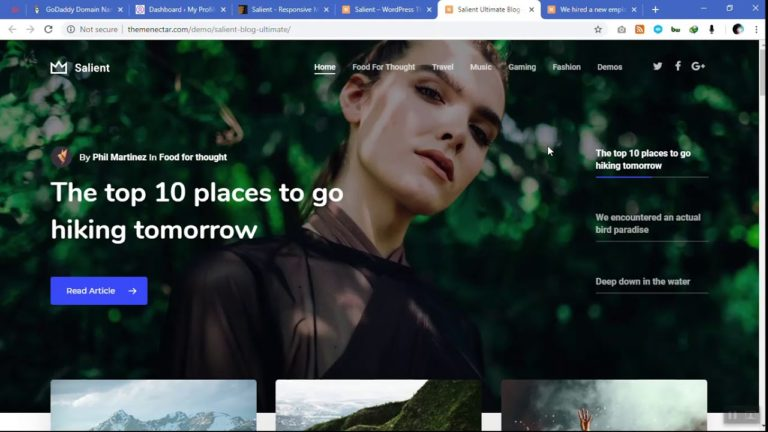 Best WordPress theme for 2019 – Modern Ui ,Best for Autoblogging – Salient theme from Themeforest
