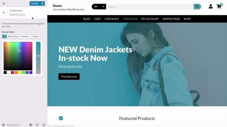Getting Started with the Modern Store WordPress Theme