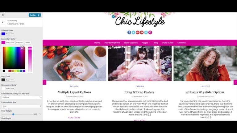 Color and Font Options – Chic Lifestyle WordPress Theme | Feminine Blog Website