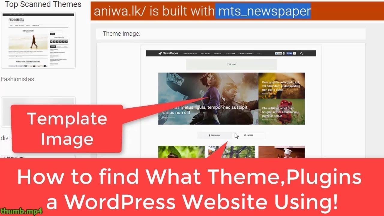 How to Find what Themes and Plugins a WordPress website use!